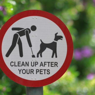 Please Pick Up After Your Pets